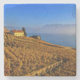 Lavaux region, Vaud, Switzerland Stone Coaster