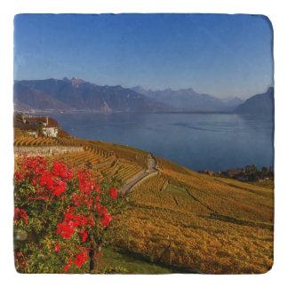 Lavaux region, Vaud, Switzerland Trivet