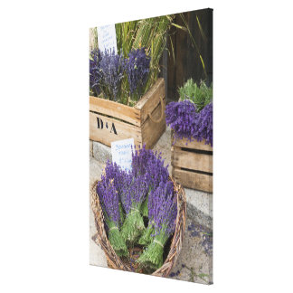 Lavendar for sale, Provence, France Canvas Print