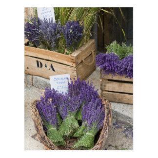Lavendar for sale, Provence, France Postcard