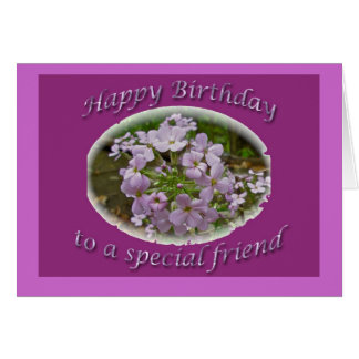 Lavendar Phlox Birthday Friend Card
