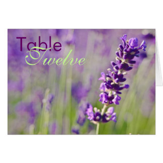 Lavendar • Table Card