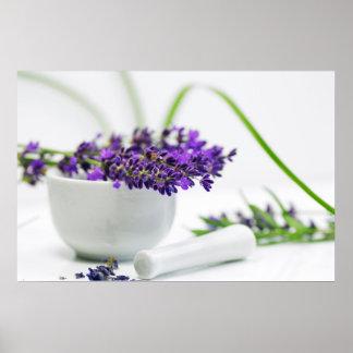 Lavendel smell poster