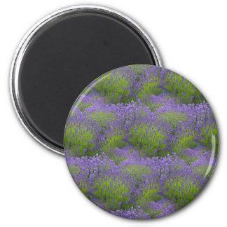 Lavender  2¼ Inch Round Magnet