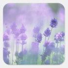 Lavender 2 square sticker
