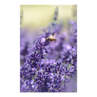 Lavender and Bees Notepad Stationery
