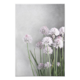 Lavender And Green Chives On Soft Gray Photo Print