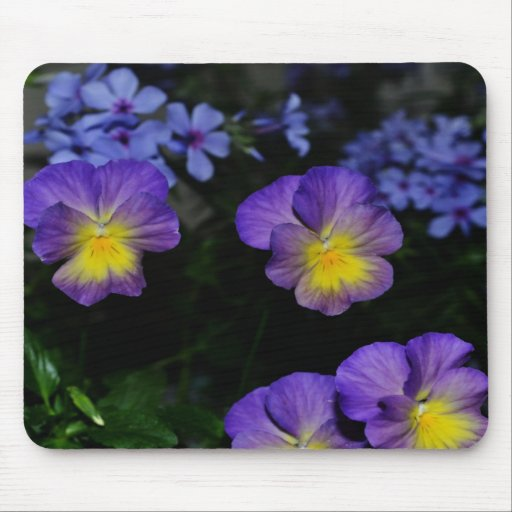 Lavender and Yellow Pansies  Mousepad