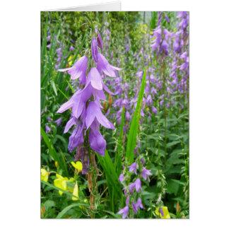 Lavender Bellflower Photograph Card