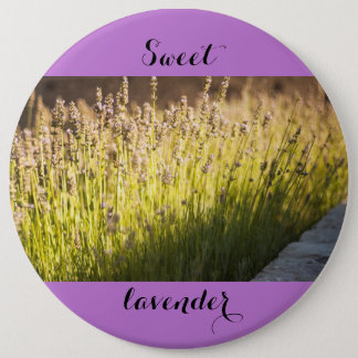 Lavender blooming 6 inch round button