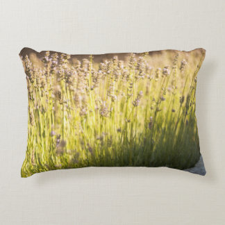 Lavender blooming decorative pillow