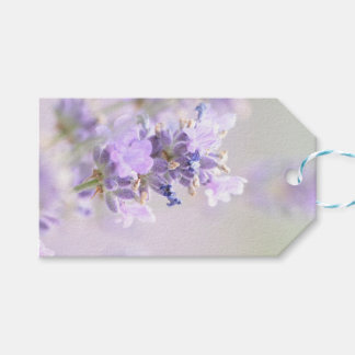 Lavender Bokeh Photographic Gift Tag Pack Of Gift Tags