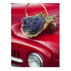 Lavender bunches rest on old farm pickup truck postcard