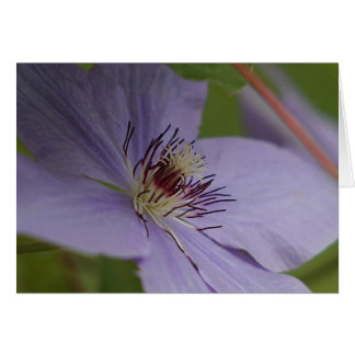 Lavender clematis card