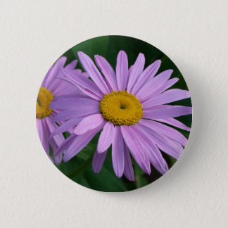 Lavender Colored Painted Daisies 2 Inch Round Button