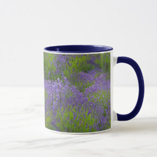 Lavender Combo Mug