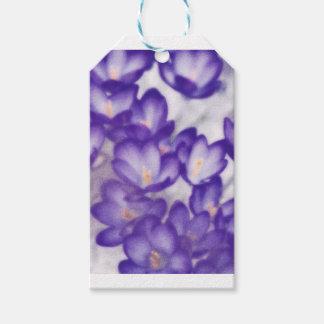 Lavender Crocus Flower Patch Gift Tags