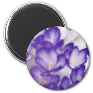 Lavender Crocus Flower Patch Magnet