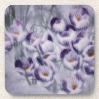 Lavender Crocus Patch Coaster