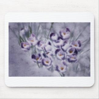 Lavender Crocus Patch Mouse Pad