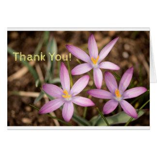 Lavender Crocus Triangle. Thank you card