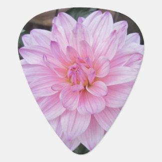 Lavender Dahlia Flower Guitar Pick