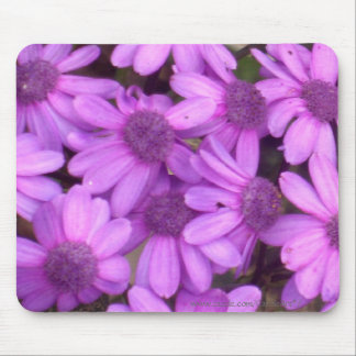 Lavender Daisies Mouse Pad
