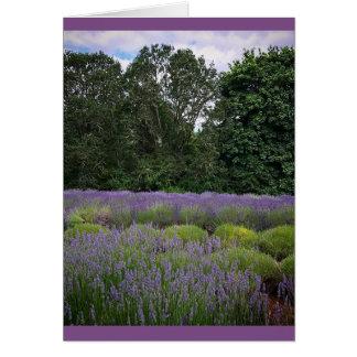 Lavender Farm Card