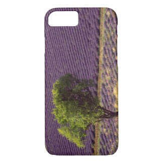 Lavender field in High Provence, France iPhone 7 Case
