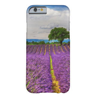 Lavender Field scenic, France Barely There iPhone 6 Case