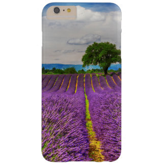 Lavender Field scenic, France Barely There iPhone 6 Plus Case