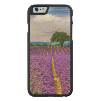 Lavender Field scenic, France Carved Maple iPhone 6 Case