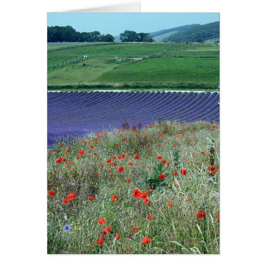 Lavender Fields Card
