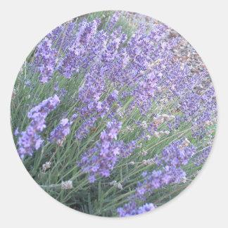 Lavender Flower Classic Round Sticker | Purple