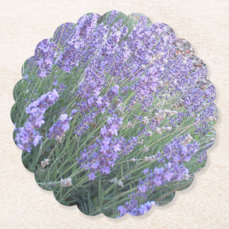 Lavender Flower Paper Coaster | Nature Photography