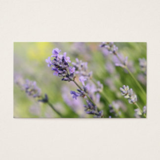 Lavender Flowers. Business Card
