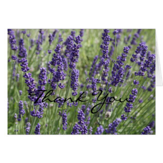 Lavender Flowers Thank You Card