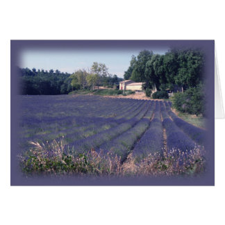Lavender Haze Blank Art Card