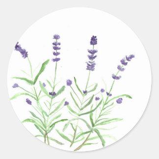 Lavender herb botanical print classic round sticker