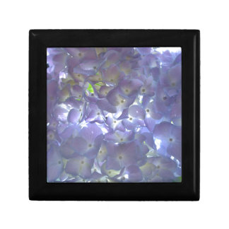 Lavender Hydrangeas Gift Box