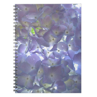 Lavender Hydrangeas Notebooks