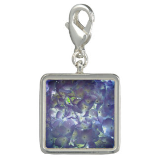 Lavender  Hydrangeas Photo Charms