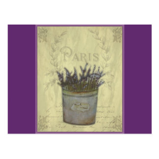 Lavender Illustration no 3 Postcard