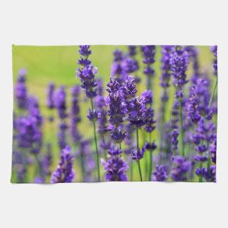 Lavender Kitchen Towels