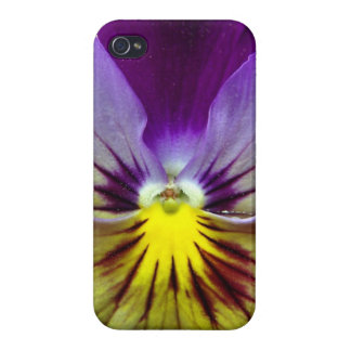 Lavender Pansy iPhone 4 Cases