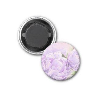 Lavender Peonies Magnet