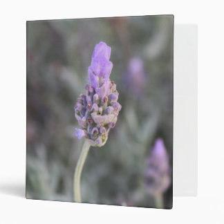 Lavender Photograph Soft and Pretty Binders