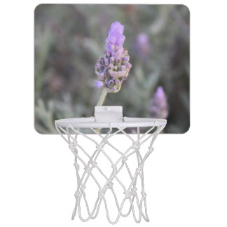 Lavender Photograph Soft and Pretty Mini Basketball Hoop