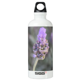 Lavender Photograph Soft and Pretty Water Bottle