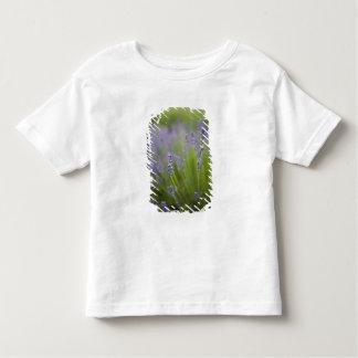 Lavender plants 2 t-shirts